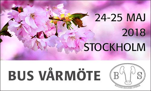bus_varmote_2018