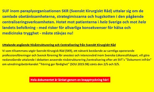 skr_jui_2018