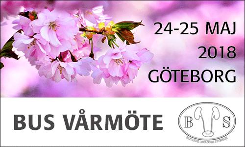 bus_varmote_2018_NEW